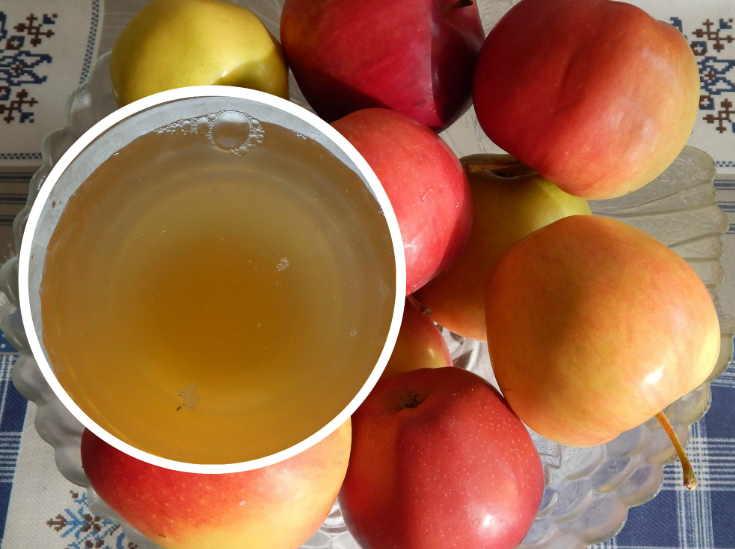 Яблочный уксус в домашних условиях без дрожжей
